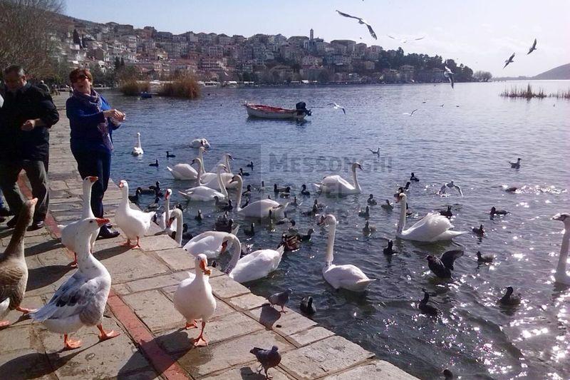 Kastoria